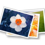 Free Fine Art America Paper and Canvas Sample Kit
