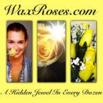Free Blogger Opp-Wax Roses