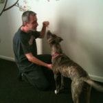 Nashville Dog Company Giveaway