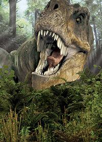 dinosaursalive