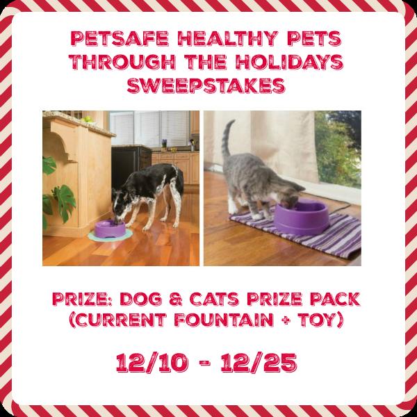 PetSafe Healthy PEts